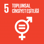 Hedef 5: Toplumsal Cinsiyet Eşitliği