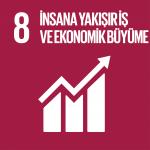 Hedef 8: İnsana Yakışır İş ve Ekonomik Büyüme