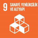 Hedef 9: Sanayi, Yenilikçilik ve Altyapı